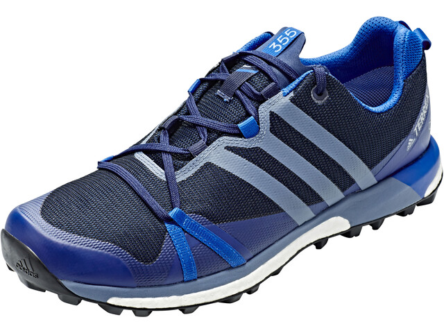 adidas TERREX Agravic GTX Chaussures running Homme, collegiate navy/raw steel/blue beauty